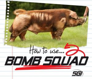 """""""HOW TO"""" Series :: BOMB SQUAD"""